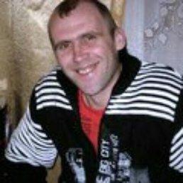Александр, 40 лет, Кесова Гора