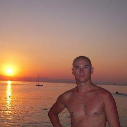 Саша, 33 года, Коростень