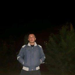 Сергей, 29 лет, Киров
