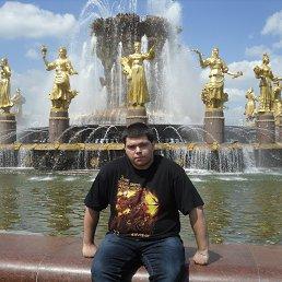 Александр, 32 года, Павловский Посад