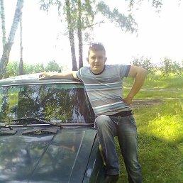 Вовчик, 34 года, Суворов
