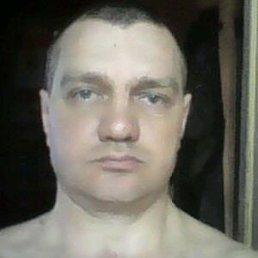 Viktor, 45 лет, Гальбштадт