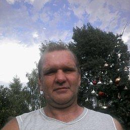 Геннадий, 49 лет, Коломна-1