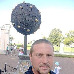 Николай, 36 лет, Сосновый Бор