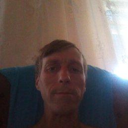 Андрей, 40 лет, Лисичанск