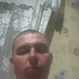 Александр, 37 лет, Белозерское