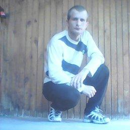Николай, 29 лет, Упорово