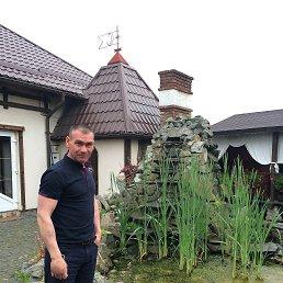 Александр, 43 года, Мукачево