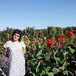 Анна, 45 лет, Макеевка