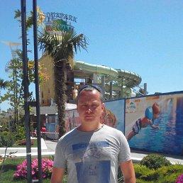 Андрей, 35 лет, Харьков