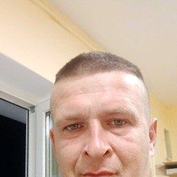 Андрей, 36 лет, Суходол