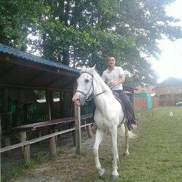 Віктор, 39 лет, Ковель