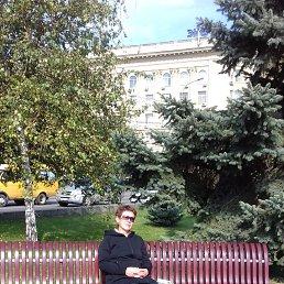 Фото Светлана, Волгоград - добавлено 2 ноября 2019