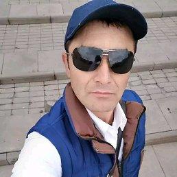 Шавкат, 32 года, Кстово