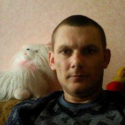 Вова, 36 лет, Дубно