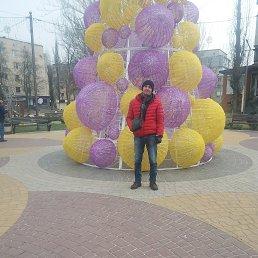 Владимир, 43 года, Мелитополь
