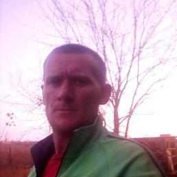 Павел, 28 лет, Орехов