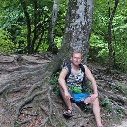 сергей, 49 лет, Лобня