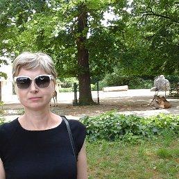Ирина, 44 года, Брянск