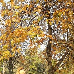 Осень - чудесная пора..