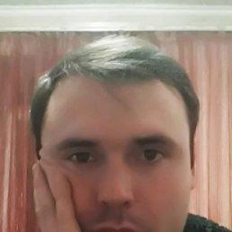 Андрей, 28 лет, Красноармейск