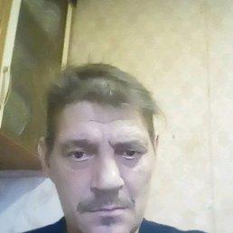 Вячеслав, 45 лет, Майма