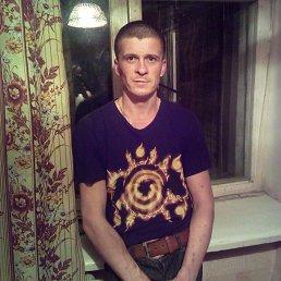 Вадим, 38 лет, Шостка