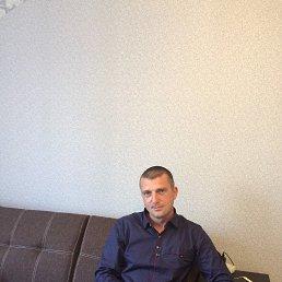 Сергей, 40 лет, Воронеж