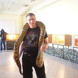 Гриша, 32 года, Барнаул