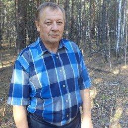 Николай, 67 лет, Курган