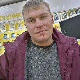 Володя, 34 года, Ашукино