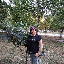 Светлана, 36 лет, Ровеньки