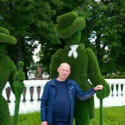 Сергей, 45 лет, Истра