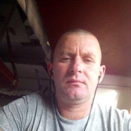 Юрий, 40 лет, Верховцево