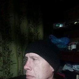 Ринат, 49 лет, Арск