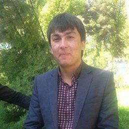 Абдулло, 28 лет, Закаталы