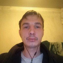 Ярослав, 29 лет, Ржев