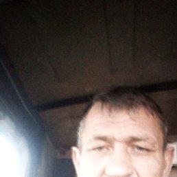 Игорь, 44 года, Пристень