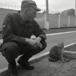 Евгений, 24 года, Мукачево