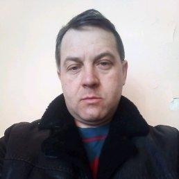 Максим, 41 год, Набережные Челны