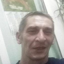 Евгений, 46 лет, Рыбинск