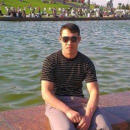 Саша, 28 лет, Электроугли