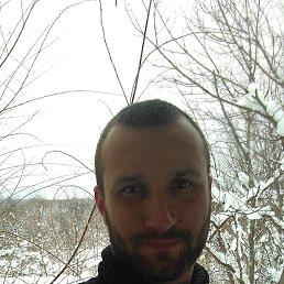 Максим, 32 года, Горишние Плавни