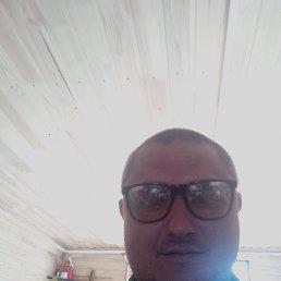 Михаил, 29 лет, Рязань