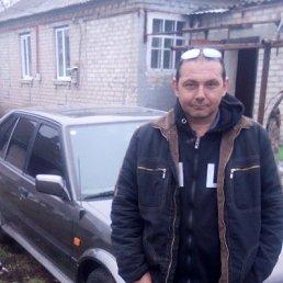 Димон, 33 года, Сватово