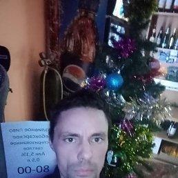 Александр, 33 года, Чайковский