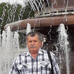 Александр, 63 года, Боровичи