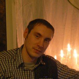 Роман, 34 года, Полярные Зори