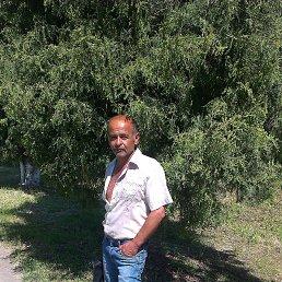 Александр, 56 лет, Краматорск