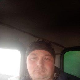 Евгений, Магнитогорск, 31 год